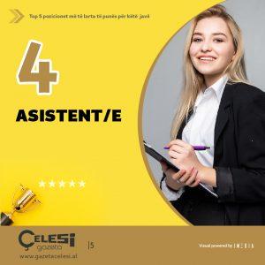 Pozicionet më të Larta të Punës asistente finance